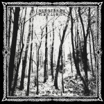 Verborgen in den Tiefen der Wälder - Vinyl